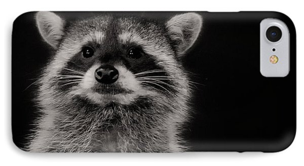 Curious Raccoon IPhone Case by Linda Villers