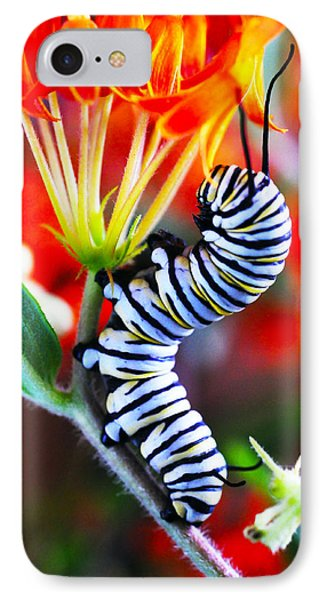 Curly Caterpiller Phone Case by Betsy Straley