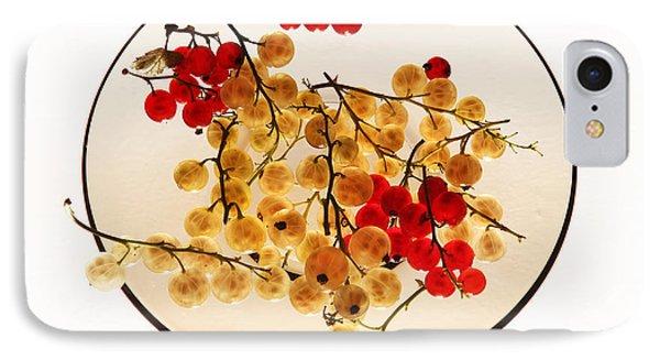 Currants On A Plate IPhone Case by Vitaliy Gladkiy