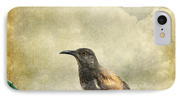 Curved Bill Thrasher IPhone Case