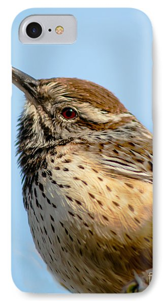 Cute Cactus Wren IPhone Case