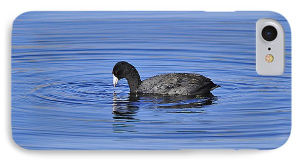 Cute Coot Phone Case by Al Powell Photography USA