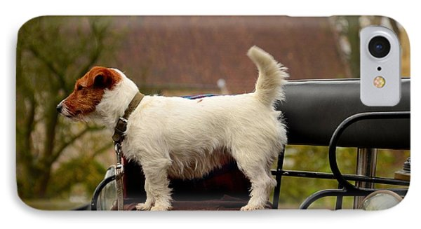 Cute Dog On Carriage Seat Bruges Belgium IPhone Case