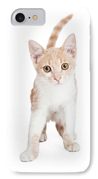 Cute Domestic Shorthair Kitten Standing  IPhone Case