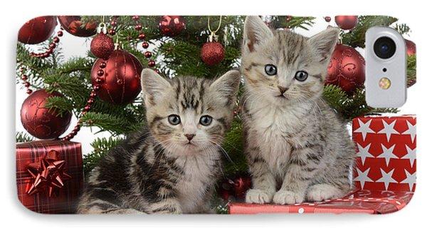 Cute Kitten Xmas Presents IPhone Case by Greg Cuddiford