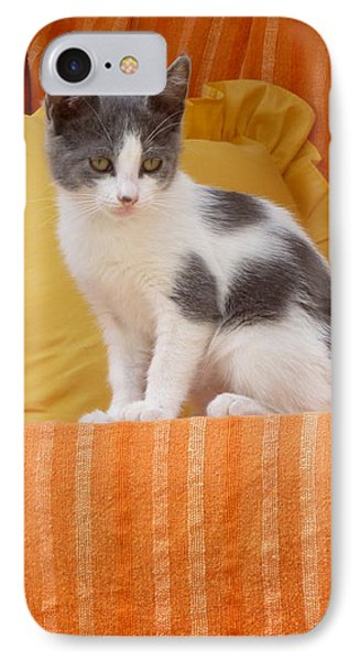 IPhone Case featuring the photograph Cute Kitty by Vicki Spindler