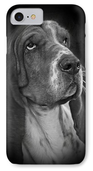 Cute Overload - The Basset Hound Phone Case by Christine Till