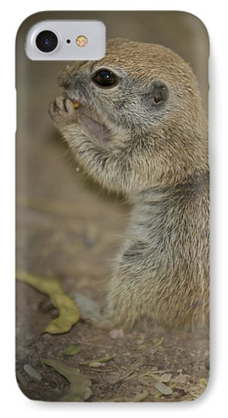 Cute Prairie Dog IPhone Case