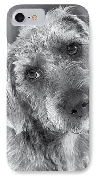 Cute Pup In Black And White Phone Case by Natalie Kinnear