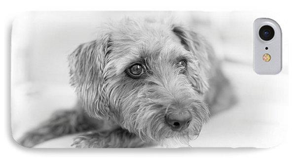 Cute Pup On Watch Phone Case by Natalie Kinnear