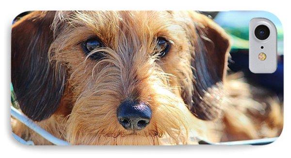 Cute Puppy Phone Case by Cynthia Guinn
