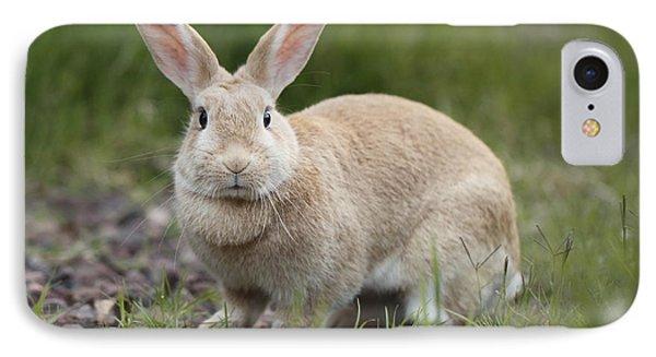 Cute Rabbit IPhone Case by Craig Dingle