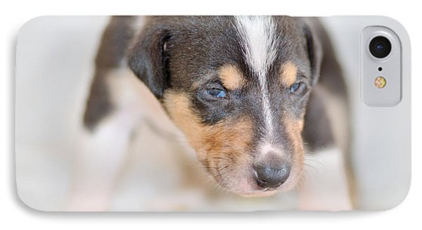 Cute Smooth Collie Puppy Phone Case by Martin Capek
