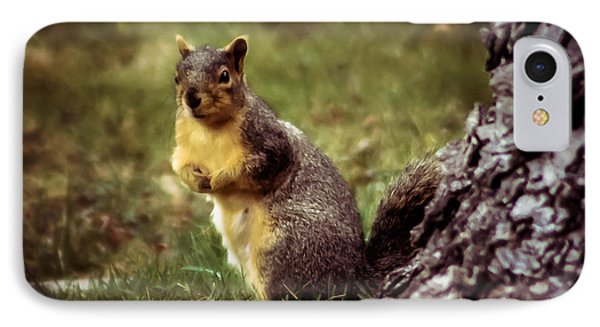 Cute Squirrel IPhone Case