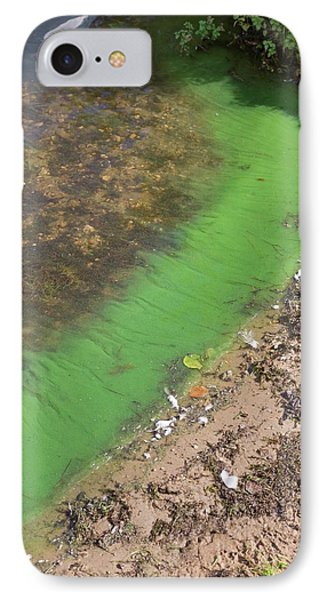 Cyanobacteria On A Eutrophic Lake Shore IPhone Case by Dr Jeremy Burgess