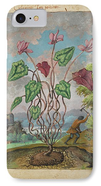 Cyclamen IPhone Case by British Library