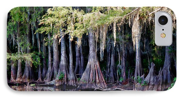 Cypress Bank IPhone Case by Lana Trussell