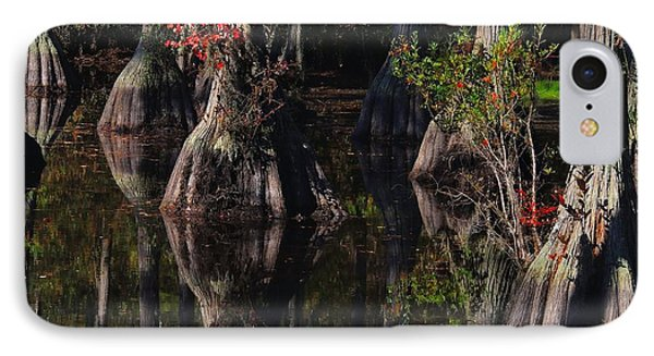Cypress Reflections IPhone Case by Laura Ragland