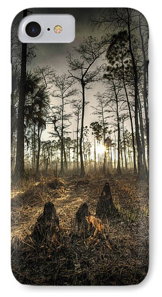 Cypress Stumps And Sunset Fire IPhone Case by Bradley R Youngberg