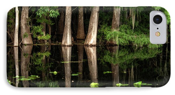 Cypress Trees In Suwanee River IPhone Case