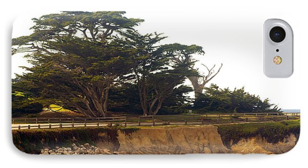 Cypress Trees On 17 Mile Drive IPhone Case