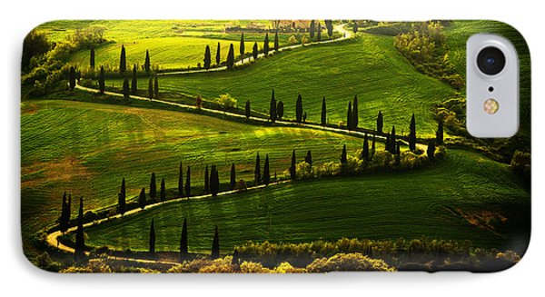Cypresses Alley IPhone Case by Jaroslaw Blaminsky