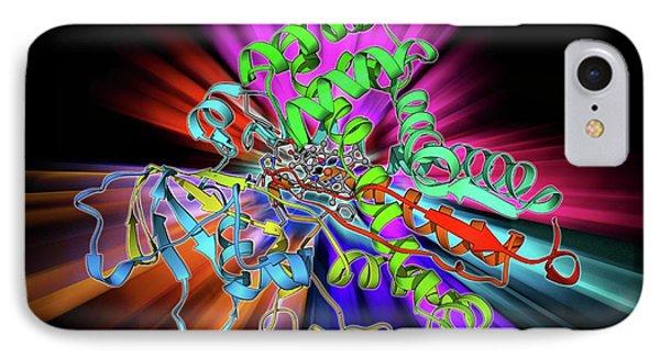 Cytochrome P450 IPhone Case by Laguna Design