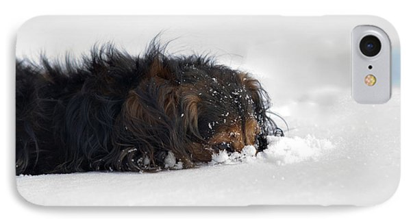 Dachshund In The Snow IPhone Case