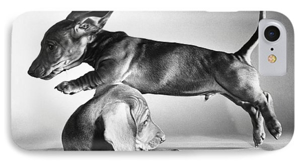 Dachshund Puppies Playing Phone Case by ME Browning