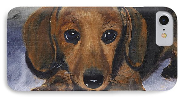 Dachshund Puppy IPhone Case by Alan Mager
