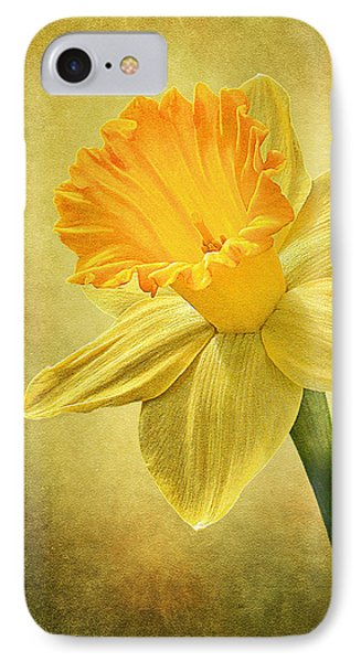 IPhone Case featuring the photograph Daffodil by Ann Lauwers