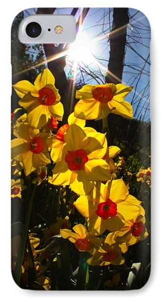 IPhone Case featuring the photograph Daffodil Days by Richard Stephen