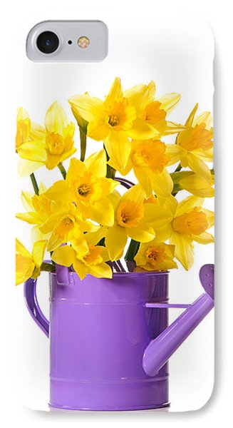 Daffodil Display Phone Case by Amanda Elwell