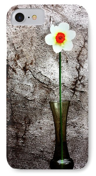 IPhone Case featuring the photograph Daffodil by Gray  Artus
