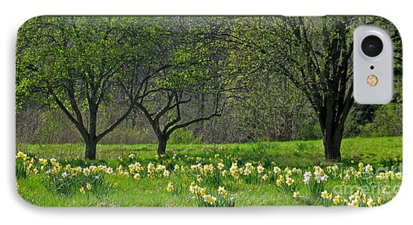 Daffodil Meadow Phone Case by Ann Horn