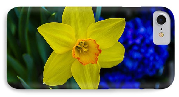 IPhone Case featuring the photograph Daffodil by Phil Abrams
