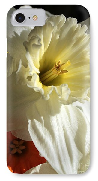 Daffodil Still Life IPhone Case