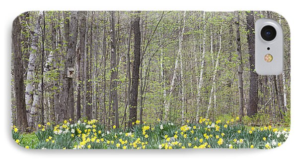 Daffodil Woods IPhone Case
