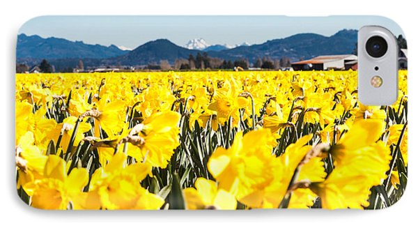 Daffodils And Snow-capped Mountains IPhone Case
