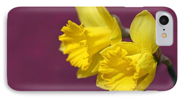 IPhone Case featuring the photograph Daffodils by Barbara West
