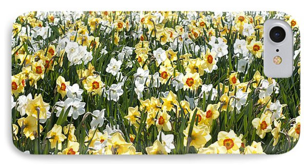 IPhone Case featuring the photograph Daffodils by Lana Enderle
