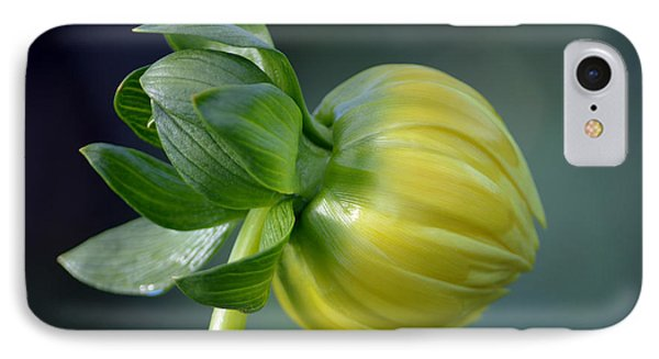 Dahlia Bud. IPhone Case by Terence Davis