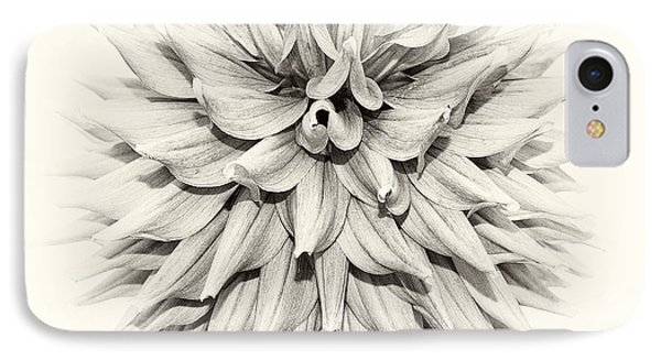 Dahlia 2 IPhone Case by Janet Burdon