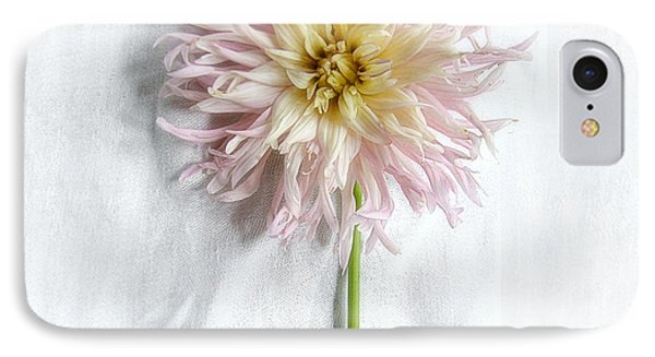 Dahlia #2 IPhone Case by Louise Kumpf