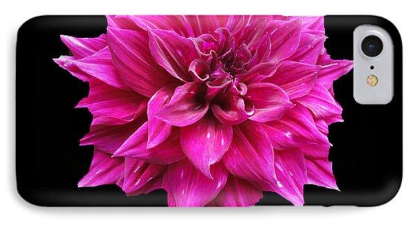 Dahlia Blossom IPhone Case