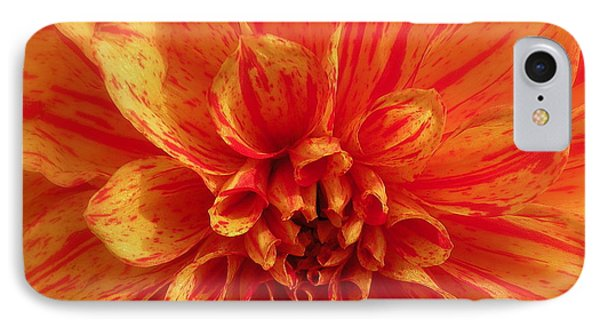 Dahlia  Phone Case by Brian Chase