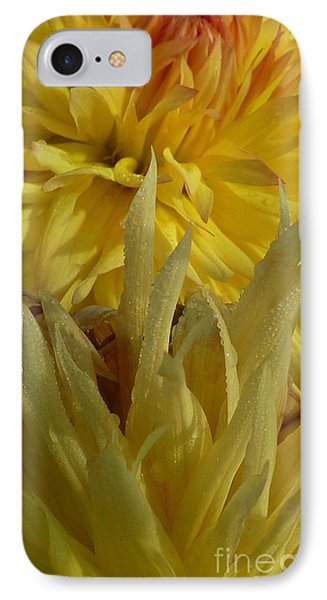 IPhone Case featuring the photograph Dahlia Dew Yellow by Susan Garren
