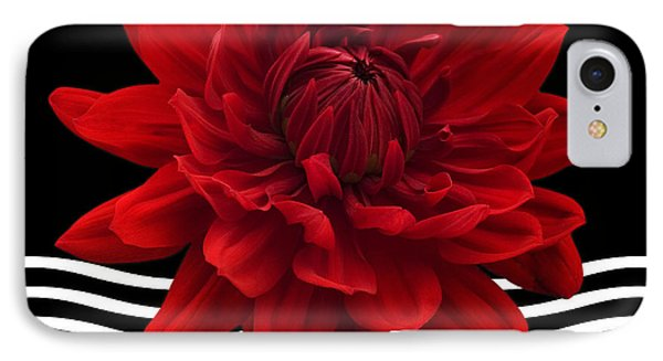 Dahlia Flower And Wavy Lines Triptych Canvas 2 - Red Phone Case by Natalie Kinnear