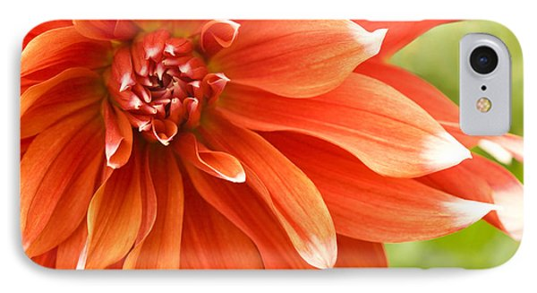Dahlia IIi - Orange Phone Case by Natalie Kinnear