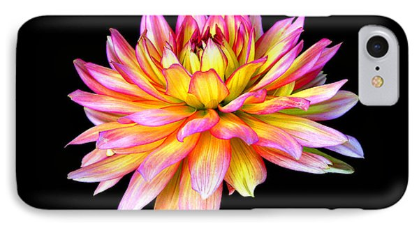 IPhone Case featuring the photograph Dahlia by Mariarosa Rockefeller